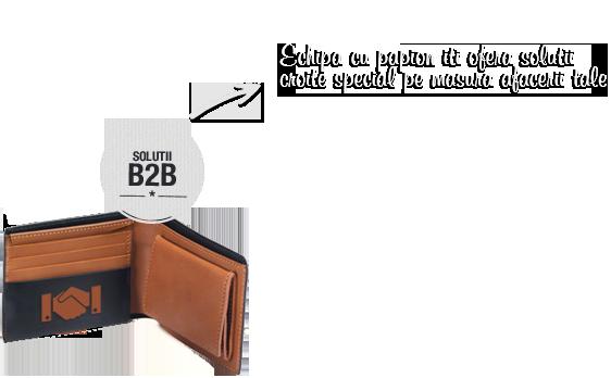 Solutii B2B - Club Alfreo